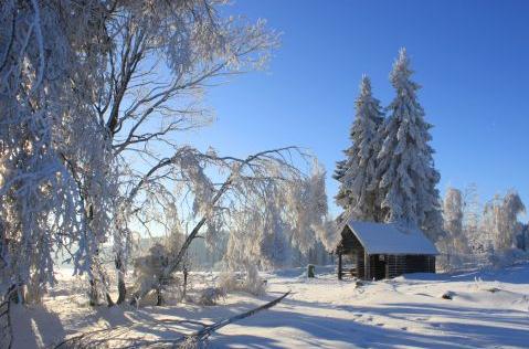 Weihnachts - und Neujahrsgruß des Ortsvorstehers