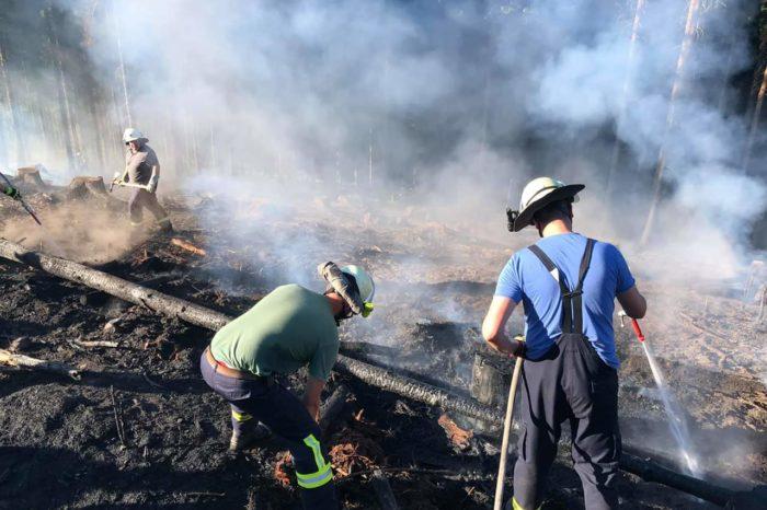 3000 Quadratmeter Wald brannten in Röhrenspring