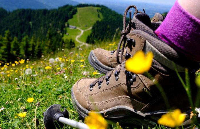 Lust auf Wandern ?